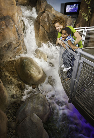 Flash Flood exhibit